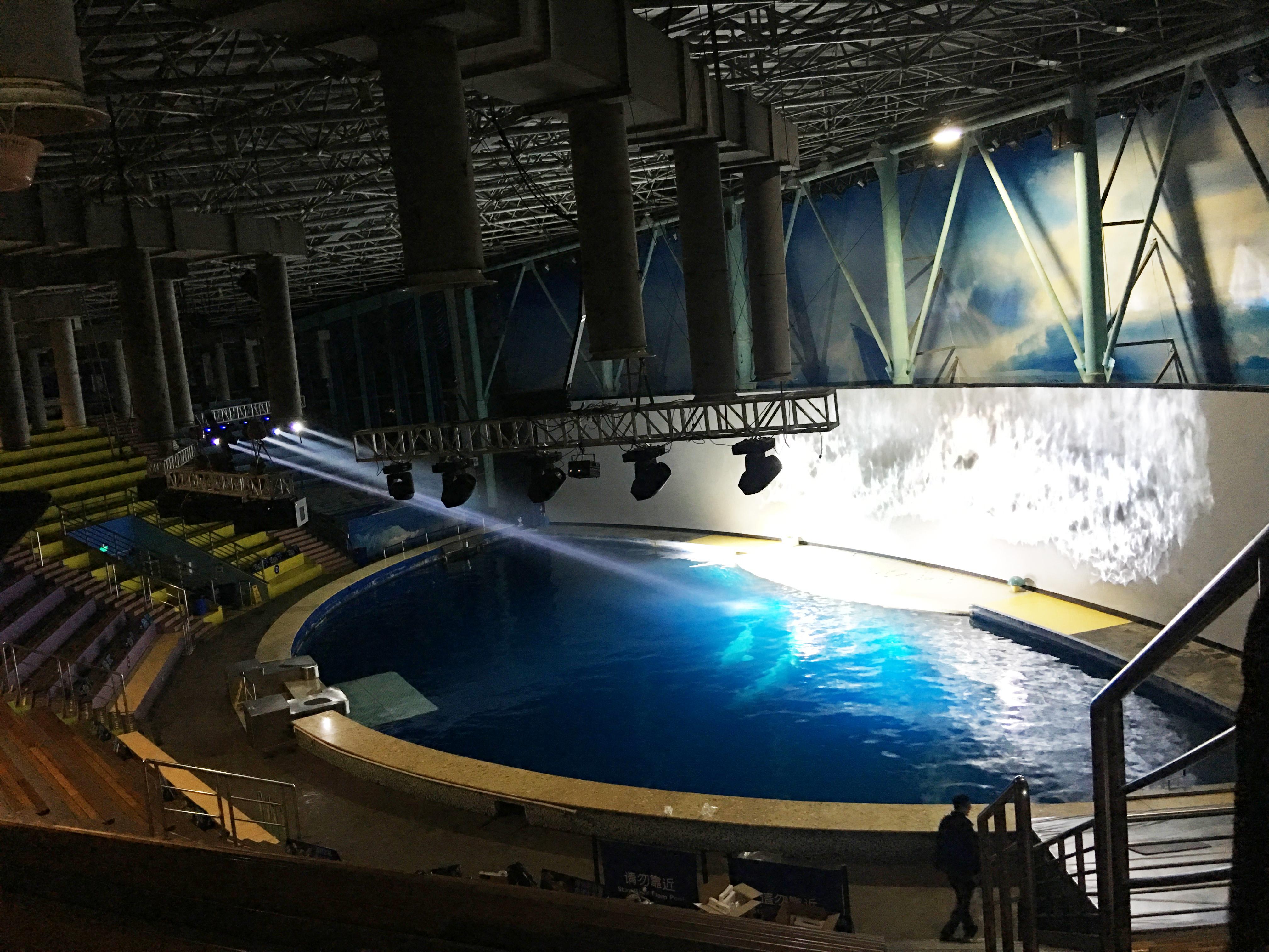 长风海洋世界白鲸剧场